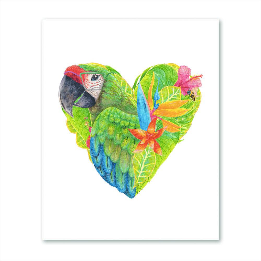 01-macaw_sRGB