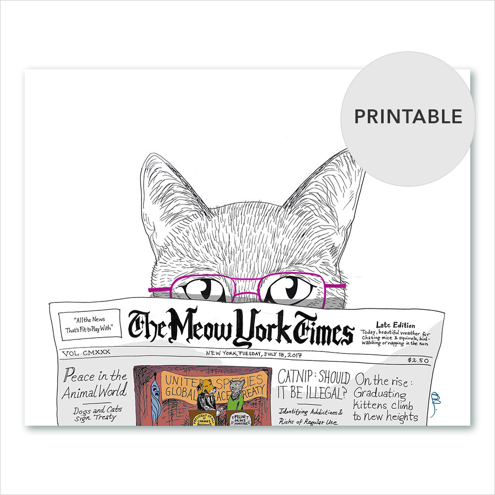 meow-york-00_sRGB