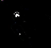 dog-superhero-icon_EDITED-2_600px
